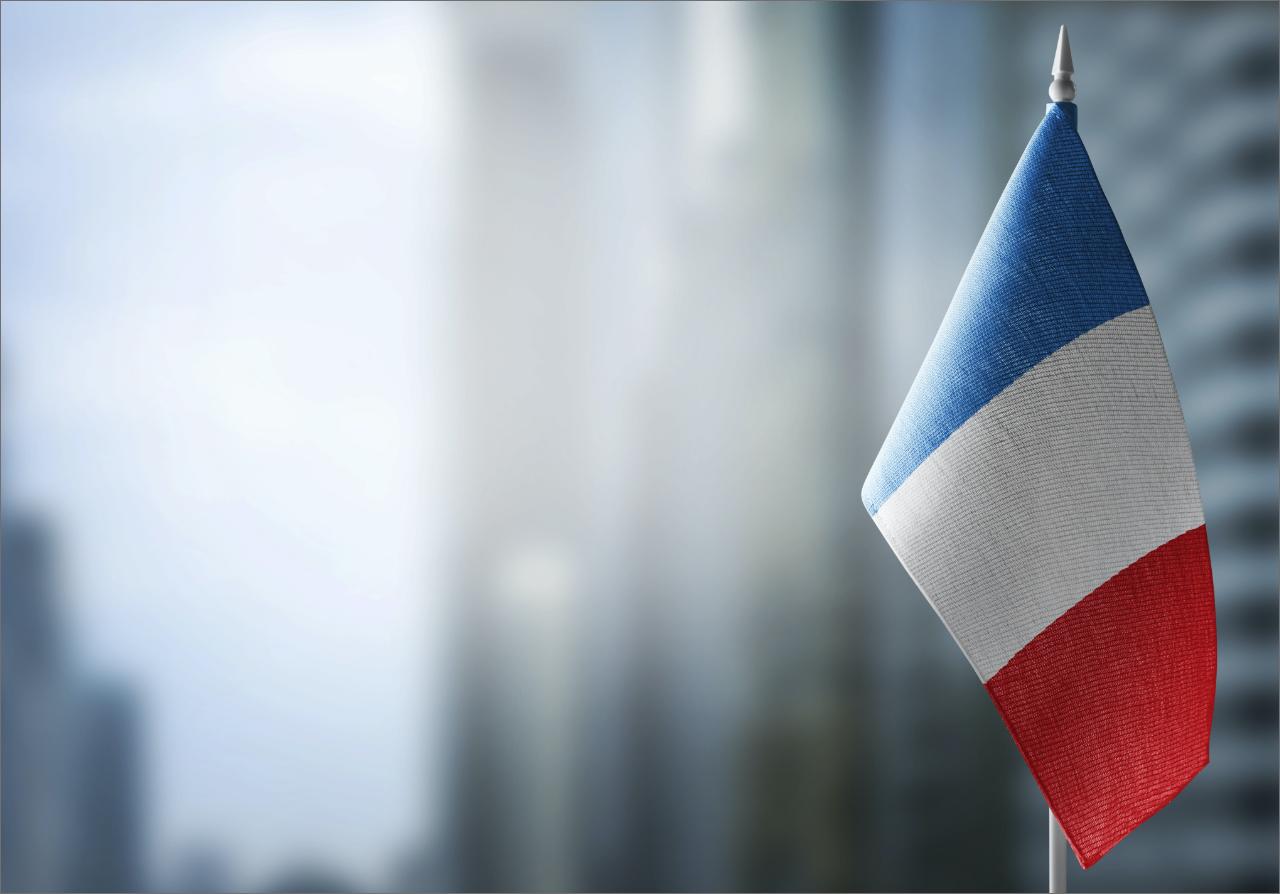ファナフランスができること